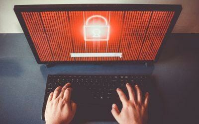 5 Reasons why Website Security is Essential for your Business